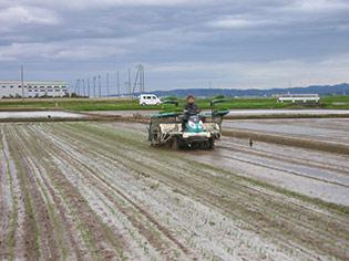 減農薬・減化学肥料60%